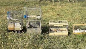- Saka kuşu avcılarına 12 bin lira ceza