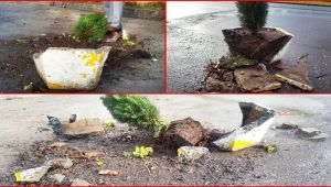 EGD önündeki beton saksılar bu halde bulundu!