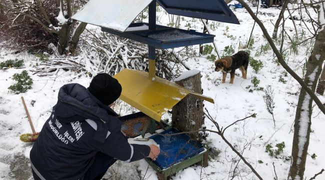 - Kdz. Ereğli Belediyesi sokak hayvanlarını unutmadı