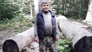 - Kestiklerin ağacın altında kalan iki kardeşten biri öldü