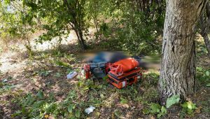 - Ceviz ağacından düşen kadın hayatını kaybetti