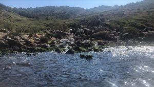 Tarım ve Orman Bakanlığı atık suları tekrar kullanıma sunacak proje geliştirdi