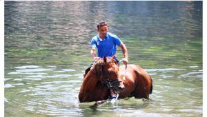 Yarış atıyla denize girdi