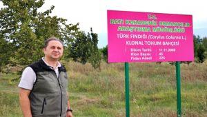 Türk fındığının genleri bu bahçede koruma altına alındı